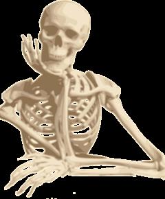 mop-skelet